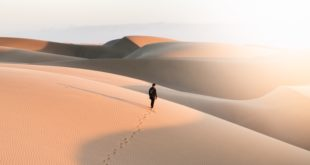 person walking on desert